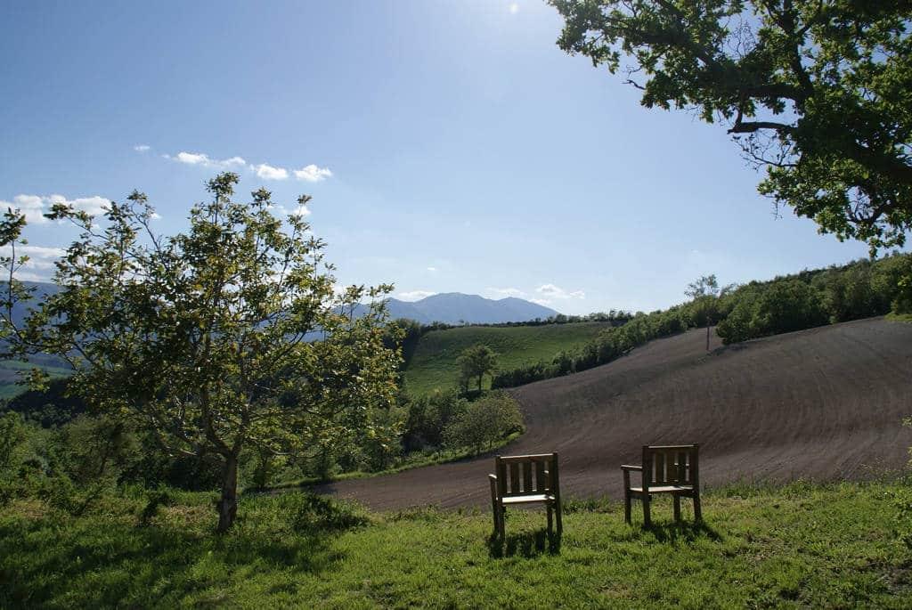 Uitzicht bij Agriturismo Vellaneta